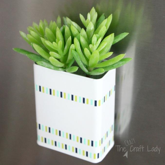 20 DIY Succulent Planters